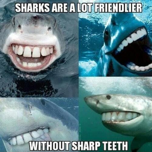Meme - sharks are a lot friendlier without sharp teeth