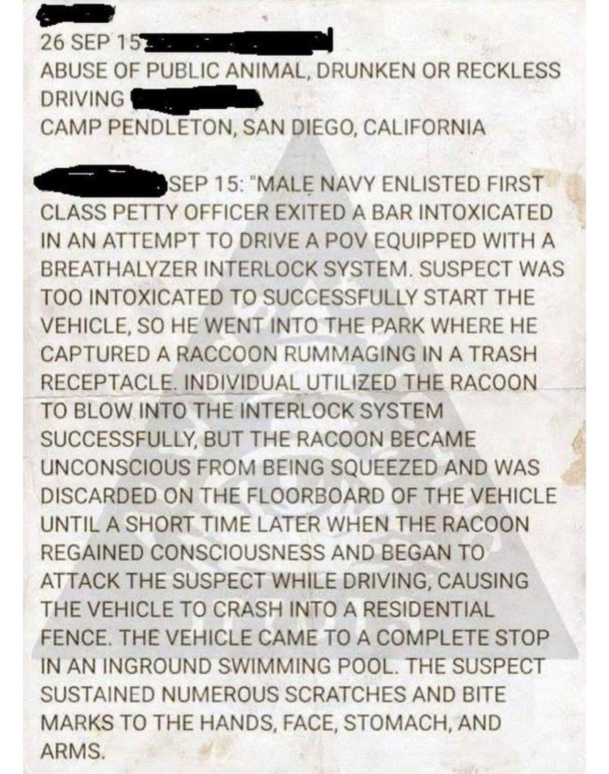 Best Police Report Ever